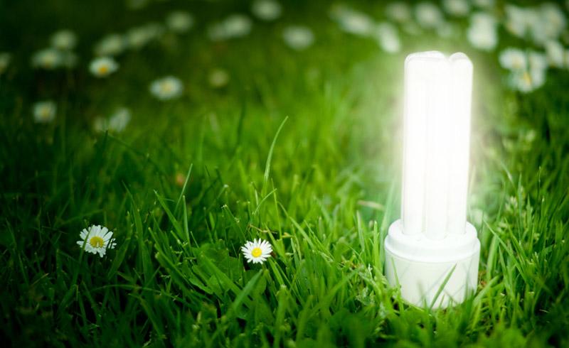 illuminazione-ecologica
